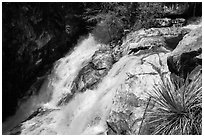 Lower Marble Fall. Sequoia National Park ( black and white)