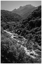 Middle Fork of the Kaweah River near Buckeye Flat. Sequoia National Park ( black and white)