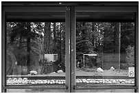 Lodgepole Visitor Center window reflexion. Sequoia National Park ( black and white)