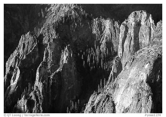 Cathedral Rocks seen from  top of El Capitan, early morning. Yosemite National Park (black and white)
