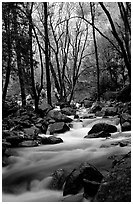 Creek at the base of Bridalveil Falls. Yosemite National Park, California, USA. (black and white)