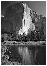 El Capitan and Merced River reflection. Yosemite National Park, California, USA. (black and white)