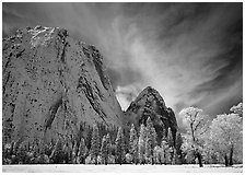 El Capitan Meadow and Cathedral Rocks with fresh snow. Yosemite National Park ( black and white)