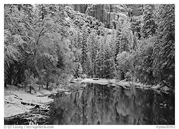 Snowy trees and rock wall reflected in Merced River. Yosemite National Park (black and white)