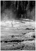 Mist raises from Tuolumne Meadows on a autumn morning. Yosemite National Park, California, USA. (black and white)