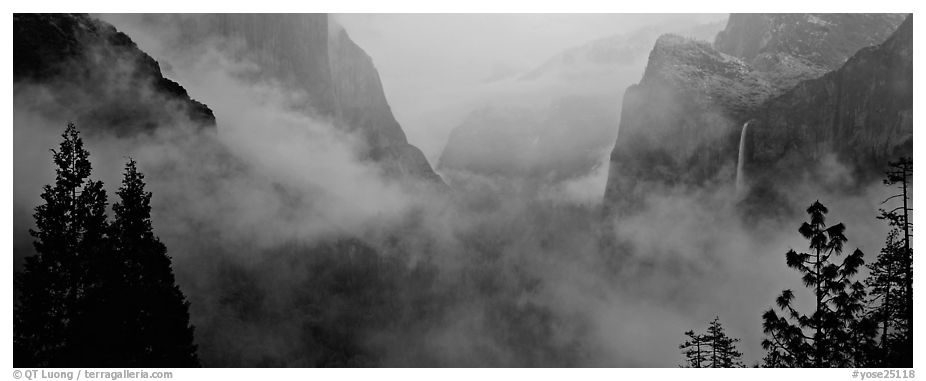 Fog in Yosemite Valley. Yosemite National Park (black and white)
