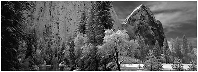 Cathedral rocks in winter. Yosemite National Park (Panoramic black and white)