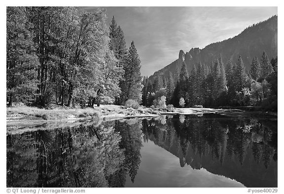 Merced River with fall colors and Sentinel Rocks reflections. Yosemite National Park (black and white)
