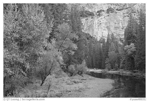 Merced River at the base of El Capitan in autumn. Yosemite National Park (black and white)