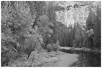 Merced River at the base of El Capitan in autumn. Yosemite National Park ( black and white)