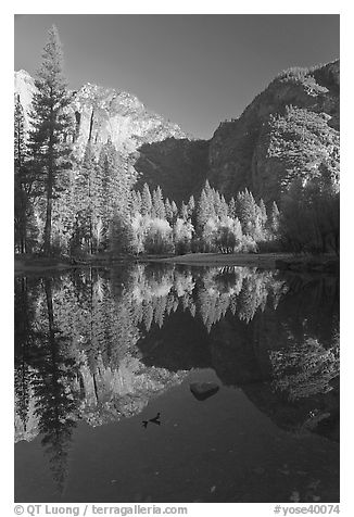 Autumn morning reflections, Merced River. Yosemite National Park (black and white)