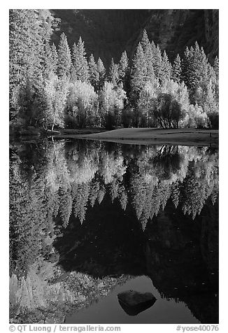 Reflections and rock, Merced River. Yosemite National Park (black and white)