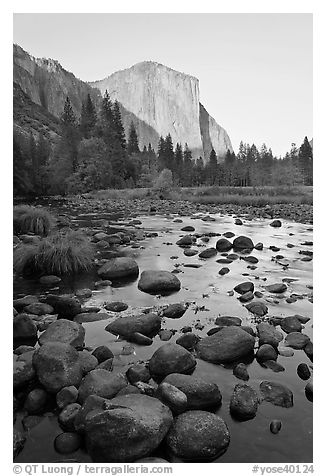 Boulders in Merced River and El Capitan at sunset. Yosemite National Park (black and white)
