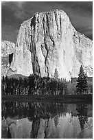 El Capitan and Merced River, morning. Yosemite National Park ( black and white)