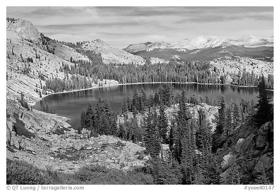 May Lake, granite domes, and forest. Yosemite National Park (black and white)