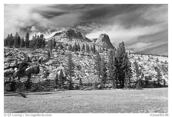 Meadow and Mount Hoffman. Yosemite National Park (black and white)