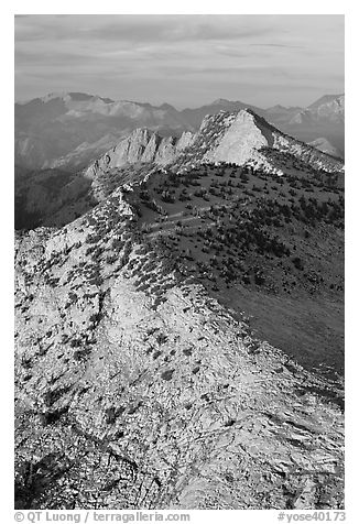 Sunset light over moutain near Mt Hoffman. Yosemite National Park (black and white)