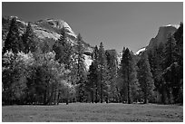 Meadow, North Dome, and Half Dome in spring. Yosemite National Park ( black and white)
