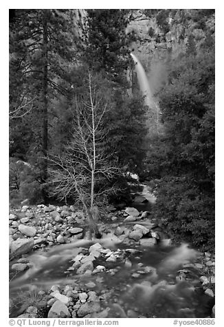 Lower falls, Cascade Creek. Yosemite National Park (black and white)