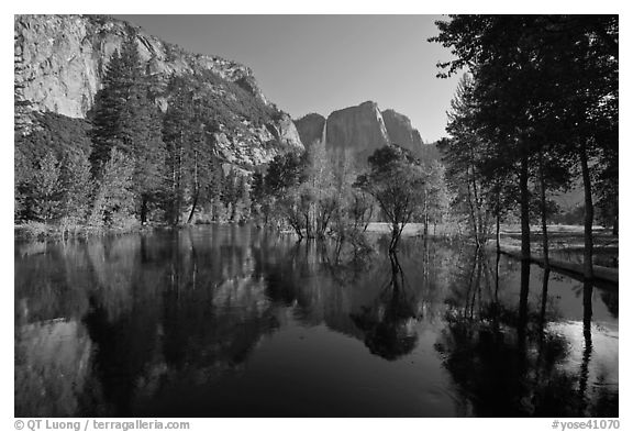 Swollen Merced River reflecting trees and cliffs. Yosemite National Park (black and white)