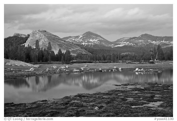 Lambert Dome and Sierra Crest peaks reflected in seasonal pond, dusk. Yosemite National Park (black and white)
