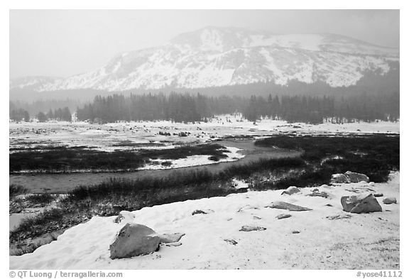 Snowy landscape near Tioga Pass. Yosemite National Park (black and white)