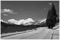 Highway hugging shore of Tenaya Lake. Yosemite National Park ( black and white)