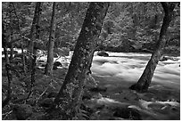 Merced River in the Spring, Happy Isles. Yosemite National Park, California, USA. (black and white)