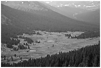 Dana Meadows seen from above, early summer. Yosemite National Park ( black and white)