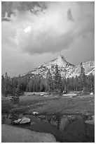 Meadow, Cathedral Peak, and clouds. Yosemite National Park, California, USA. (black and white)