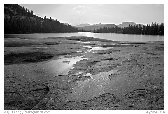 Glacial polish and Lower Cathedral Lake, late afternoon. Yosemite National Park (black and white)