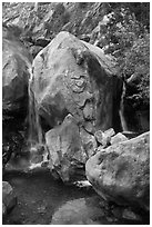 Base of Wapama fall in summer, Hetch Hetchy. Yosemite National Park, California, USA. (black and white)