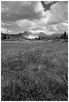 Storm light, Tuolumne meadows. Yosemite National Park, California, USA. (black and white)