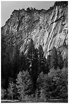 Ephemeral waterfall near Royal Arches. Yosemite National Park ( black and white)