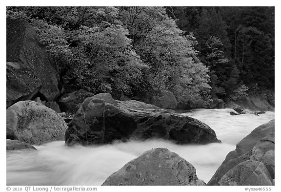 Merced River whitewater in spring. Yosemite National Park (black and white)