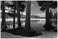 Tenaya Lake in the spring. Yosemite National Park ( black and white)