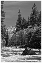 High waters and rapids in Merced River. Yosemite National Park ( black and white)