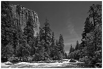Merced River and El Capitan. Yosemite National Park, California, USA. (black and white)