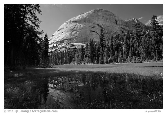 Half-Dome from Hidden Lake. Yosemite National Park (black and white)