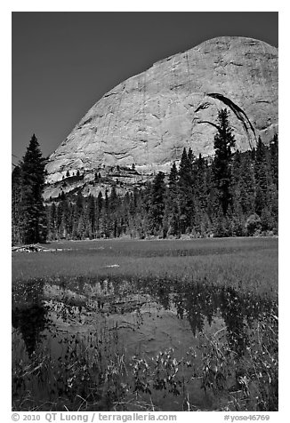 Half-Dome reflected in Lost Lake. Yosemite National Park (black and white)
