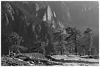 Sentinel Rock and valley from North Dome. Yosemite National Park ( black and white)