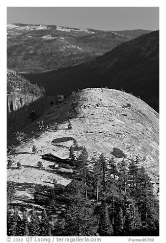 Smooth and rounded North Dome. Yosemite National Park (black and white)