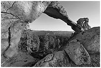 Indian Arch, late afternoon. Yosemite National Park, California, USA. (black and white)