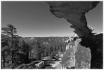 Indian Rock arch and forest, morning. Yosemite National Park ( black and white)