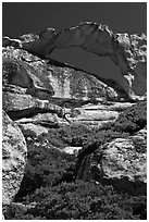 Granite natural arch, Indian Rock. Yosemite National Park, California, USA. (black and white)