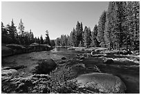 Lyell Fork of the Tuolumne River, afternoon. Yosemite National Park ( black and white)