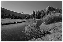 Tuolumne River in Lyell Canyon, morning. Yosemite National Park ( black and white)
