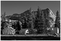 Sierra High Camp and Vogelsang peak. Yosemite National Park, California, USA. (black and white)