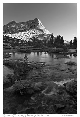 Vogelsang Peak reflected in stream pond. Yosemite National Park (black and white)