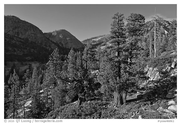 Canyon near Merced Lake. Yosemite National Park (black and white)